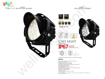 LED flood light wlmf20