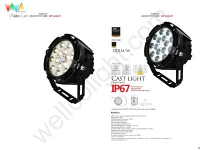 LED flood light wlmf21